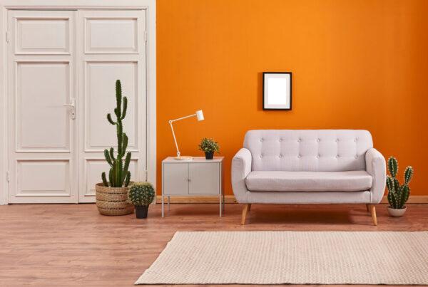 Interior Design : What Color Goes With Orange